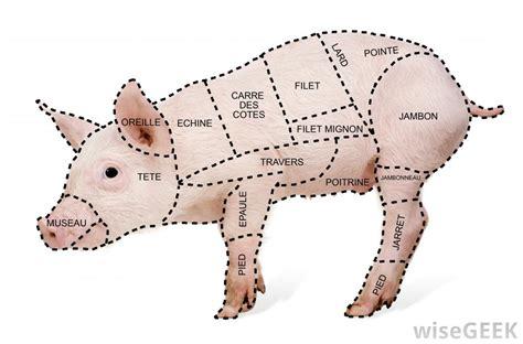 pork cuts of meat diagram car interior design
