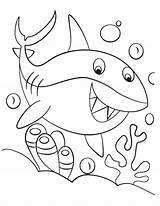 Shark Coloring Pinkfong sketch template