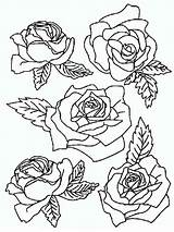 Coloring Rose Pages Flowers Flower Print Google Name Printable Bouquet Recommended Colors походження піна sketch template