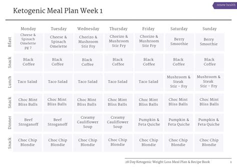 day ketogenic weight loss meal plan recipe book
