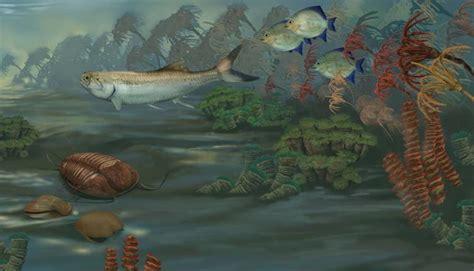 mississippian marine habitat   million years