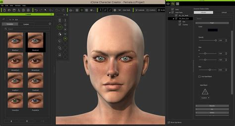 Creator For by Iclone Character Creator Alternatives And Similar Software