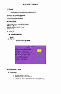 brain based lesson plan With brain based lesson plan template