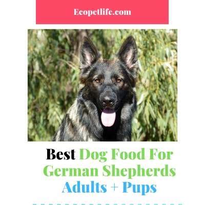 dog food  german shepherds high quality