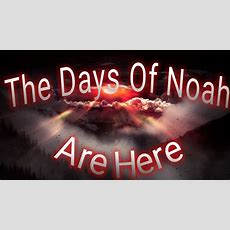 "The ""days"" Of Noah Are Here! Youtube"
