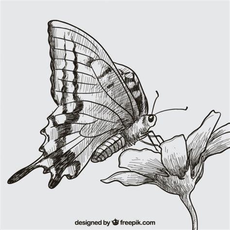 Desenho borboleta e flor Vetor Grátis