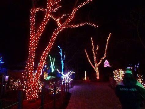 toledo zoo lights before toledo zoo lights
