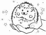 Hedgehog Pages Coloring Colouring Drawing Line Smiling Sonic Sheets Preschool Characters Animal Getdrawings Sheet Shadow Bulk Doghousemusic A3 Science sketch template