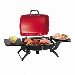 Petit Barbecue A Gaz : barbecue sur pied gaz transportable barbecues grills ~ Dailycaller-alerts.com Idées de Décoration