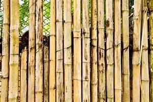Bambus Vernichten Tipps : sichtschutz aus bambus wetterfest und nat rlich 2 ~ Whattoseeinmadrid.com Haus und Dekorationen