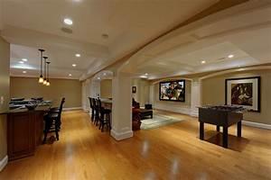 lower, level, renovation, creates, wonderful, spaces, for, ashburn, , virginia, family