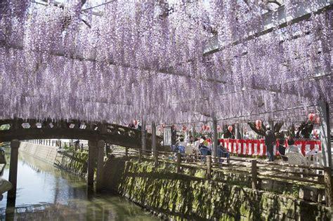 Fabulous Fukuoka   OISHII