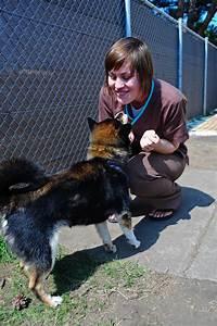 photos With dog caregiver