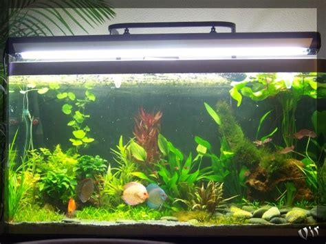 aquarium de matevir osaka 320