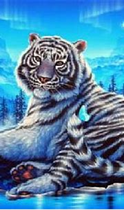 Blue tigers | Pictures of Tiger
