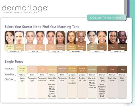 Skin Tones by Skin Tone Charts On Hair Color Charts Warm