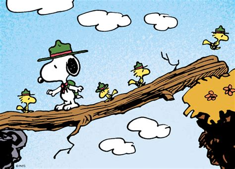 PEANUTS on | Snoopy and woodstock, Snoopy beagle, Charlie ...