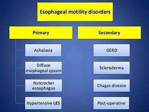 What Is Esophageal Dysmotility