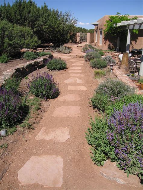 xeriscape garden design 21 best images about xeriscape on pinterest colorado springs utah and landscapes