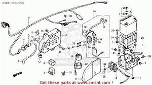 Honda Atc125m 1986  G  Usa Wire Harness