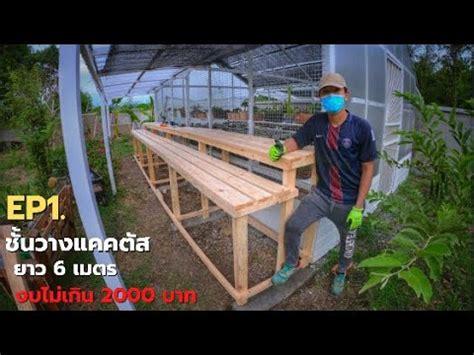 EP1. ทำโต๊ะวางแคคตัส ยาว 6 เมตร งบประหยัด จากไม้สนรัสเชีย ...