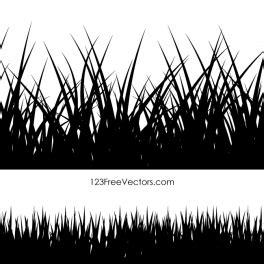 vector   vector art