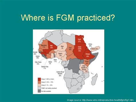 Slides and Notes for Alternatives to FGM in Western Africa