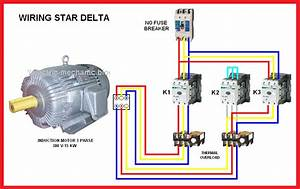 Wiring Diagram Star Delta Connection Motor