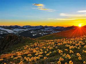 Sunset, Sun, Rays, Landscape, Stone, Peaks, Mountain, Meadow, With, Yellow, Flowers, Beautiful, Spring