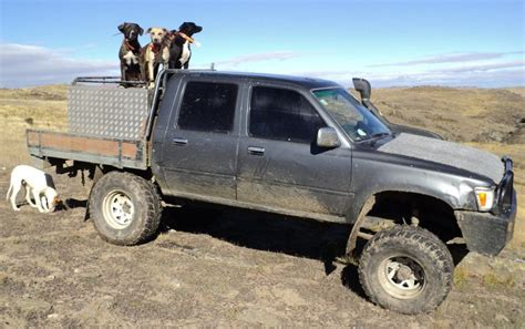 toyota hunting truck new zealand working hilux the best stuff in the world