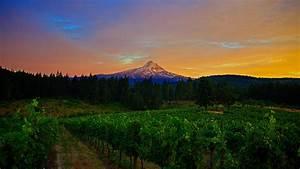 Wallpaper, Mountains, 4k, Hd, Wallpaper, 8k, Field, Sunset