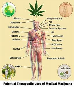 uses of medical cannabis