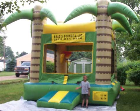 palm tree bounce house rental erie pa