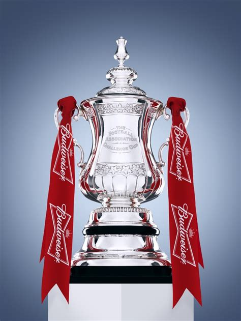 Snapshot: Budweiser To Sponsor FA Cup, 'Multi-Ball Extra ...