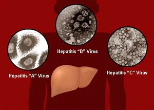 What Causes Hepatitis? – HealthLob.com Hepatitis