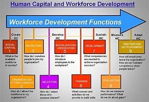 Human Capital And Workforce Development