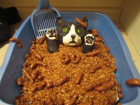 litter box cake 40 most cakes made some might make you puke
