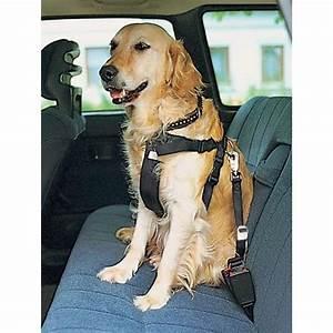 Harnais De Securite Pour Elagage : harnais de s curit auto sac dos pour chien fourre ~ Edinachiropracticcenter.com Idées de Décoration