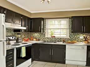 painting kitchen cabinets ideas home renovation painting kitchen cabinets black fabulous in interior design for home remodeling with painting