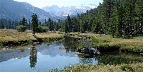 Lyell Fork Fishing Fishing Yosemite