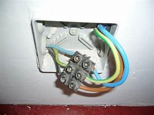 Norme Branchement Four Electrique : branchement fils lectriques plaque induction raccordement ~ Premium-room.com Idées de Décoration