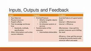 Project And Organizational Structure