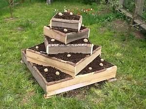 Walnussbaum Selber Pflanzen : tipps f r eine kartoffel pyramide doovi ~ Michelbontemps.com Haus und Dekorationen