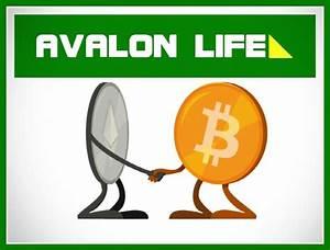 Avalon, Life, Review