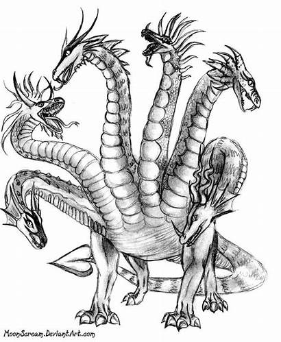 Hydra Mythology Greek Drawing Dragon Drawings Draw