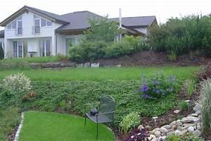 Hang Bepflanzen Bodendecker : hang pflegeleicht gestalten bodendecker am laufenden meter ~ Lizthompson.info Haus und Dekorationen