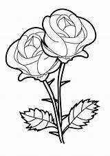 Coloring Rose Pages Roses Printable Adults sketch template