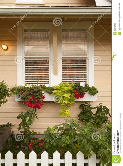 planter boxes  flowers  window stock photo