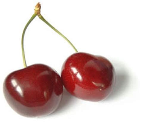 conseils pour cuisiner la cerise un fruit de saison à déguster sans tarder