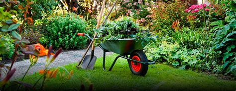 need a gardener welcome to larsen lawn care services servicing yucaipa calimesa california